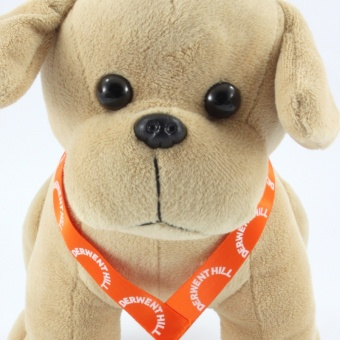 labrador-dog-soft-toy-sash-front-clup-1024