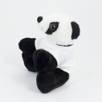 16cm-panda-t-shirt-side-1024