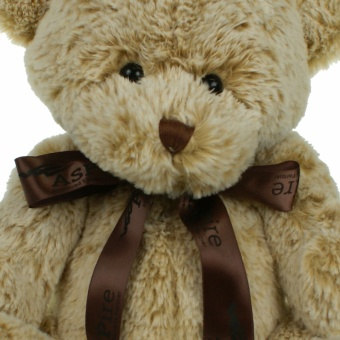 20cm-fudge-bow-closeup-1024
